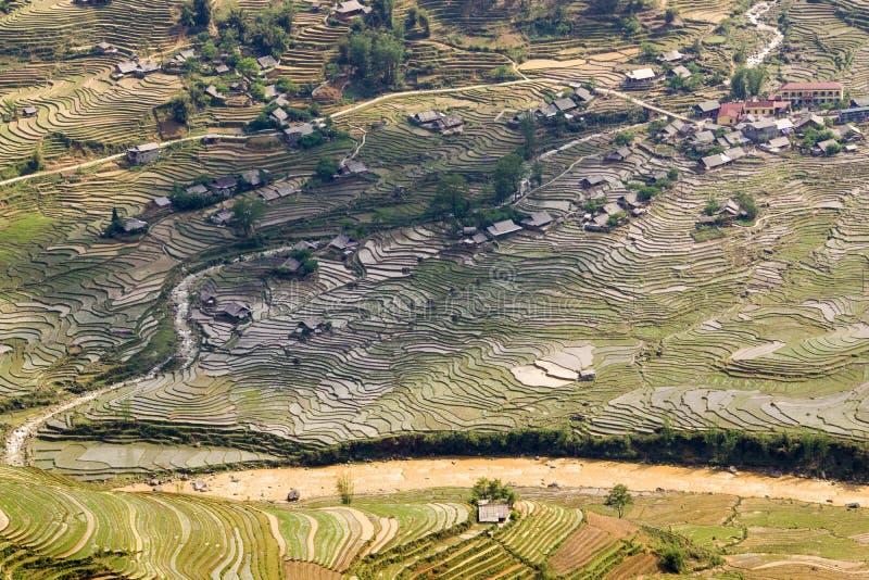 Πεζούλια ρυζιού σε Sa PA, Βιετνάμ στοκ φωτογραφία