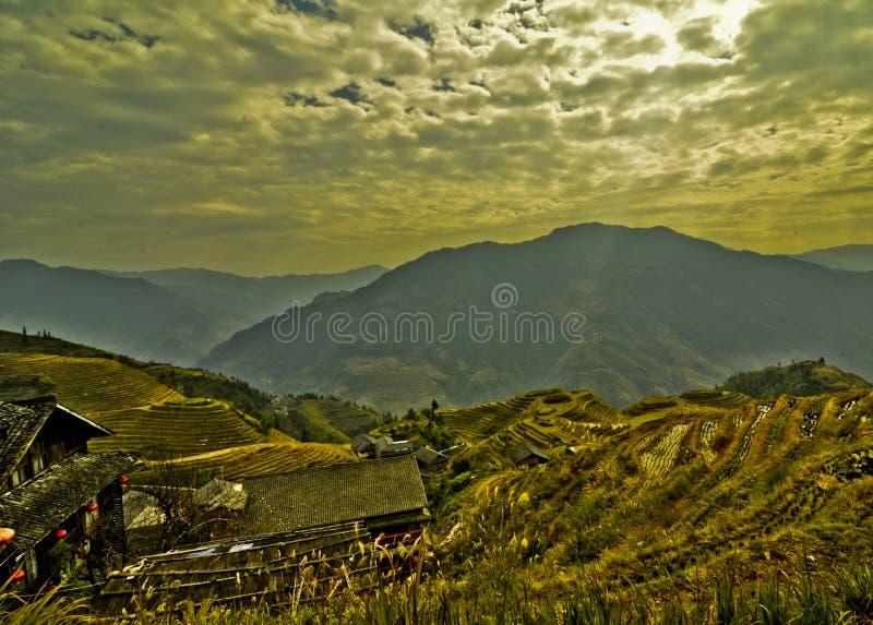 Πεζούλια ρυζιού Guilin στοκ εικόνες με δικαίωμα ελεύθερης χρήσης