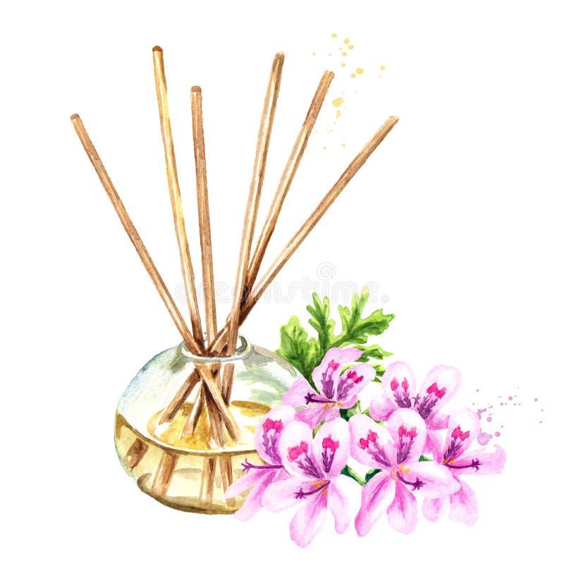 Πελαργόνιο αρώματος graveolens ή πελαργόνιο Χ υγρό asperum σε ένα μπουκάλι γυαλιού με τα ραβδιά και ένα λουλούδι Αναψυκτικό Water ελεύθερη απεικόνιση δικαιώματος