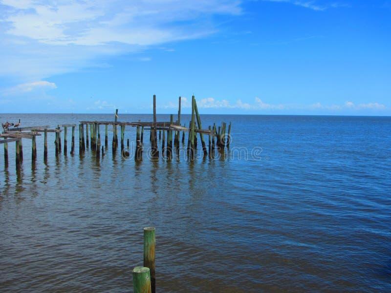Πελεκάνοι και πουλιά θάλασσας στις παλαιές ξύλινες αποβάθρες στοκ φωτογραφία με δικαίωμα ελεύθερης χρήσης