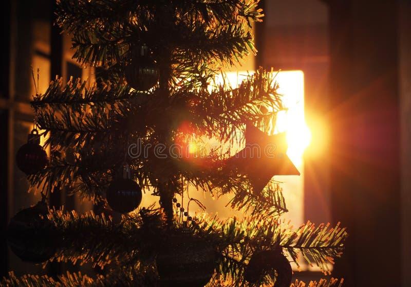 Περίγραμμα χριστουγεννιάτικου δέντρου και χριστουγεννιάτικη διακόσμηση το ηλιοβασίλεμα, εορτασμός Χριστουγέννων στοκ εικόνα