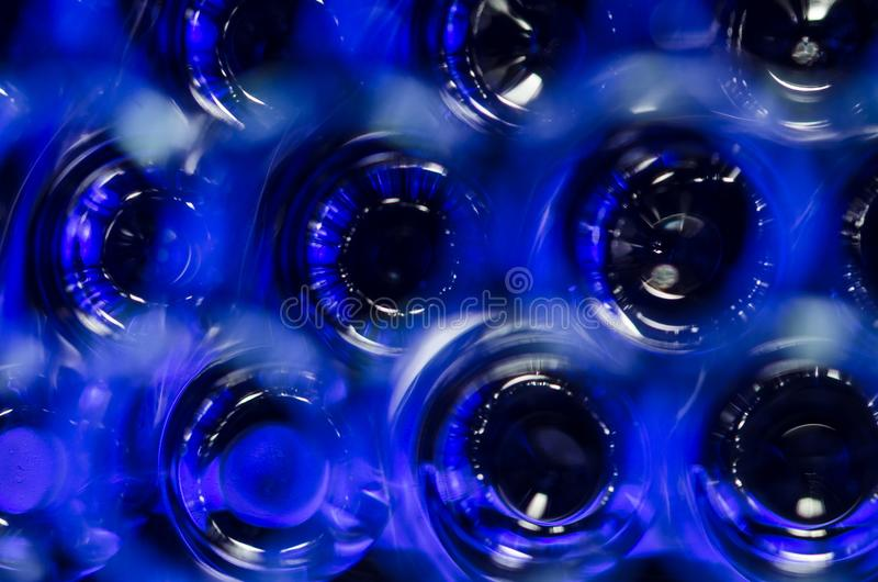 Περίληψη: Πολλαπλάσιο μπλε-Eyed μυστήριο στοκ εικόνες με δικαίωμα ελεύθερης χρήσης