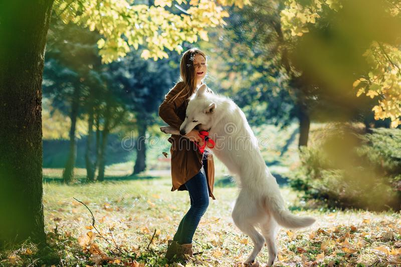 περίπατοι κοριτσιών στο πάρκο φθινοπώρου με το νέο άσπρο ελβετικό σκυλί ποιμένων στοκ φωτογραφία