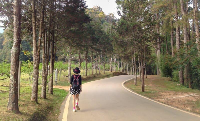 Περίπατος γυναικών τουριστών μόνο στο δρόμο στο φυσικό πάρκο στοκ φωτογραφία με δικαίωμα ελεύθερης χρήσης