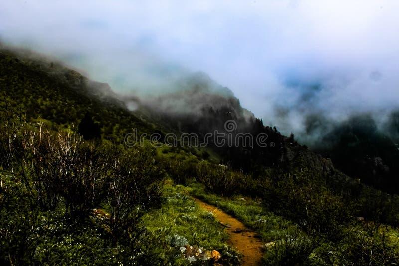 Περίπατος μέσω της ομίχλης στοκ φωτογραφίες με δικαίωμα ελεύθερης χρήσης
