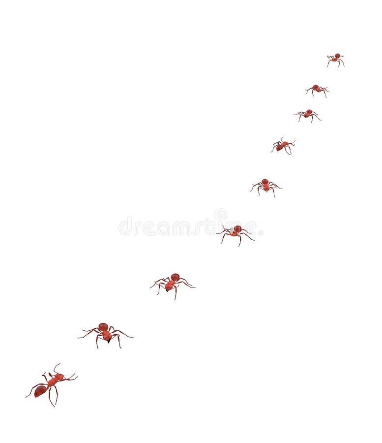 Περίπατος μυρμηγκιών θεριστικών μηχανών στην ομαδική εργασία και την πειθαρχία γραμμών απεικόνιση αποθεμάτων