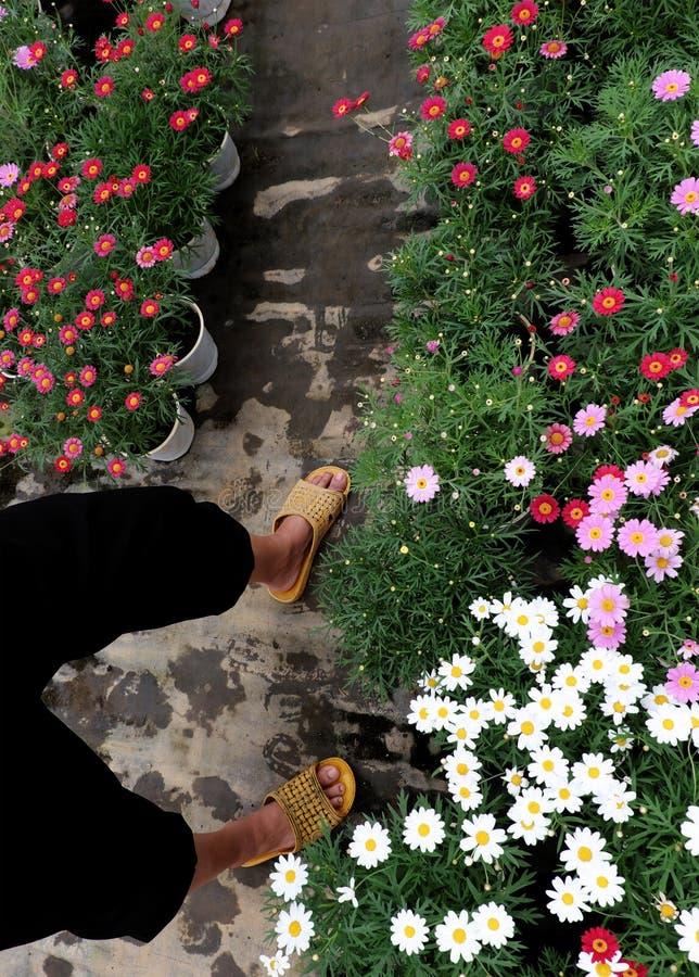 Περίπατος ποδιών της Farmer στον κήπο στοκ φωτογραφία με δικαίωμα ελεύθερης χρήσης