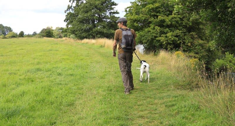 Περίπατος σκυλιών στον τομέα στοκ φωτογραφία
