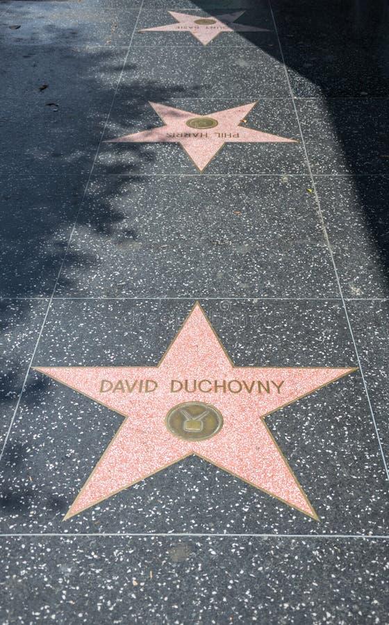 περίπατος φήμης hollywood Κύριο τουριστικό αξιοθέατο της λεωφόρου Hollywood στο Λος Άντζελες, Καλιφόρνια στοκ εικόνα με δικαίωμα ελεύθερης χρήσης