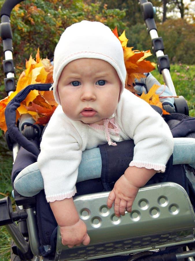 Download περίπατος φθινοπώρου στοκ εικόνες. εικόνα από μάτια, πρόσωπο - 393976