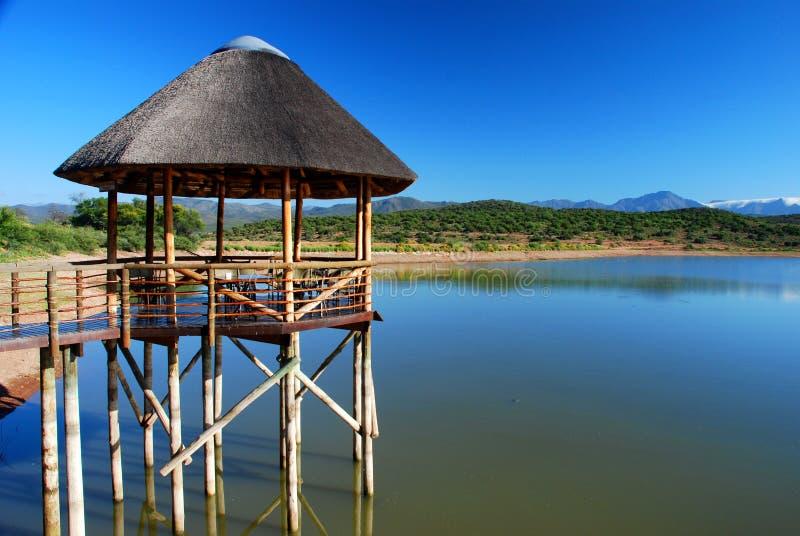 Περίπτερο σε μια λίμνη. Κοντά σε Oudtshoorn, δυτικό ακρωτήριο, Νότια Αφρική στοκ εικόνα με δικαίωμα ελεύθερης χρήσης