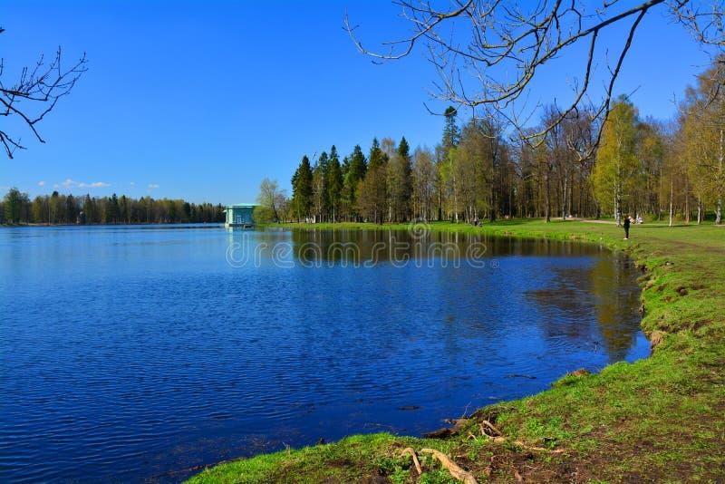 Περίπτερο της Αφροδίτης και της λίμνης Beloe Γκάτσινα Πετρούπολη Ρωσία ST στοκ φωτογραφία με δικαίωμα ελεύθερης χρήσης
