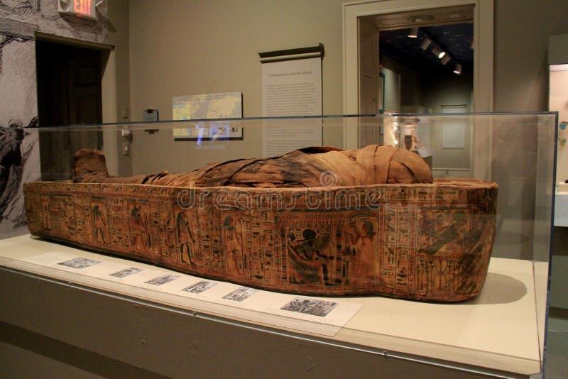 Περίπλοκες λεπτομέρειες της αρχαίας μούμιας στο αιγυπτιακό έκθεμα, του ιδρύματος του Άλμπανυ ιστορίας και της τέχνης, Νέα Υόρκη,  στοκ φωτογραφία με δικαίωμα ελεύθερης χρήσης