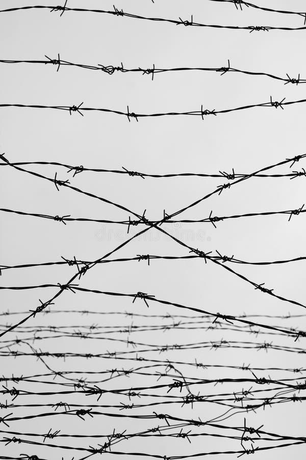 περίφραξη οδοντωτό καλώδιο φραγών αφήστε φυλακή αγκάθια _ Ένας φυλακισμένος Στρατόπεδο συγκέντρωσης ολοκαυτώματος φυλακισμένοι στοκ εικόνα