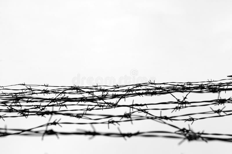 περίφραξη οδοντωτό καλώδιο φραγών αφήστε φυλακή αγκάθια _ Ένας φυλακισμένος Στρατόπεδο συγκέντρωσης ολοκαυτώματος φυλακισμένοι στοκ εικόνα με δικαίωμα ελεύθερης χρήσης