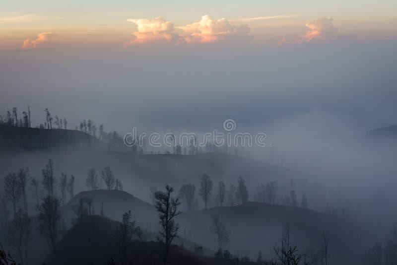 Περίχωρα του ηφαιστείου Ijen Δέντρα μέσω του καπνού ομίχλης και θείου Αντιβασιλεία Banyuwangi της ανατολικής Ιάβας, Ινδονησία στοκ εικόνα