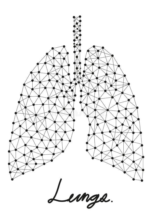 Περίληψη των πνευμόνων διανυσματική απεικόνιση