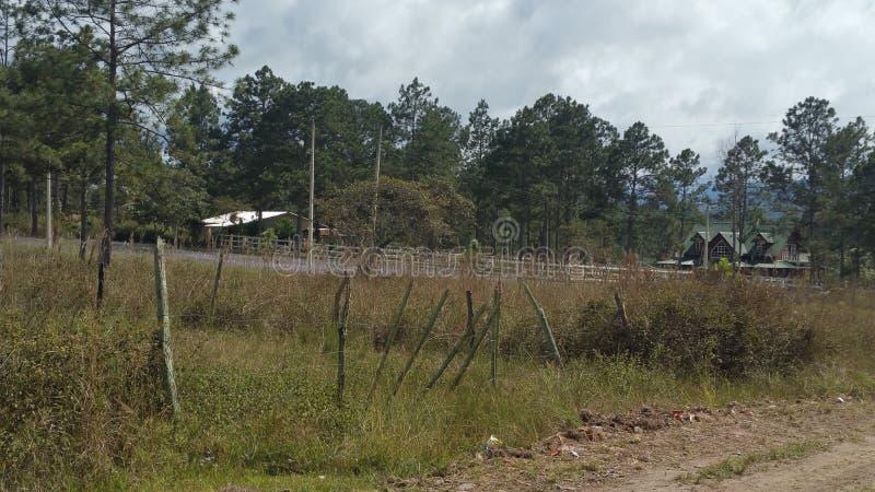 Περιβάλλον για να ζήσει σε Siguatepeque, Ονδούρα στοκ εικόνα με δικαίωμα ελεύθερης χρήσης
