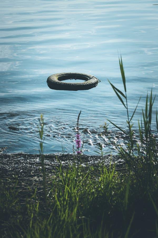 Περιβαλλοντική ρύπανση: το παλαιό ελαστικό αυτοκινήτου βρίσκεται στο νερό, ακτή στοκ φωτογραφία με δικαίωμα ελεύθερης χρήσης