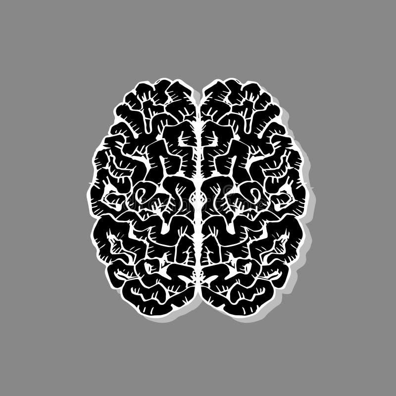 Περιγραμματικός του ανθρώπινου εγκεφάλου απεικόνιση αποθεμάτων