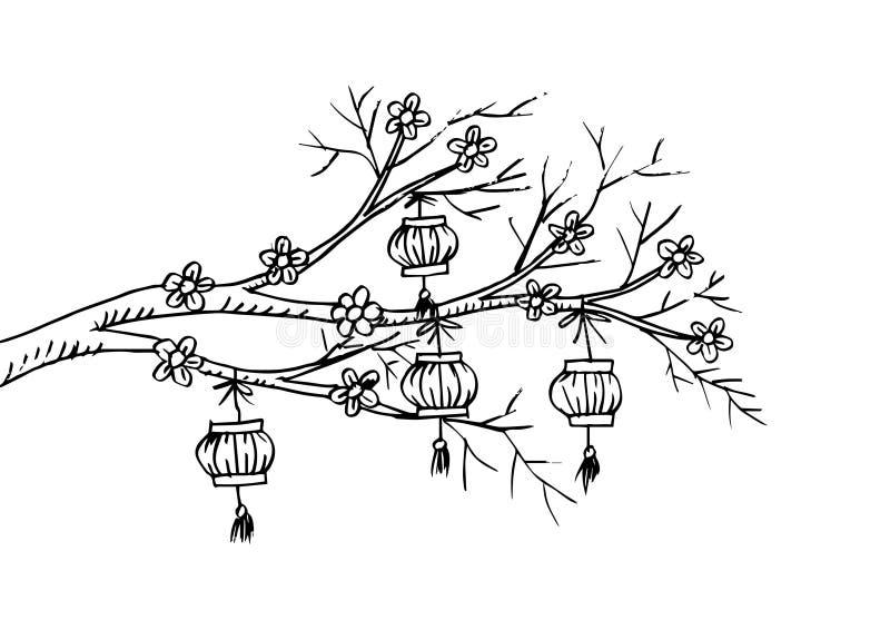 Περιγραμματικός του κινεζικού φαναριού κρεμάστε στο δέντρο κερασιών απεικόνιση αποθεμάτων