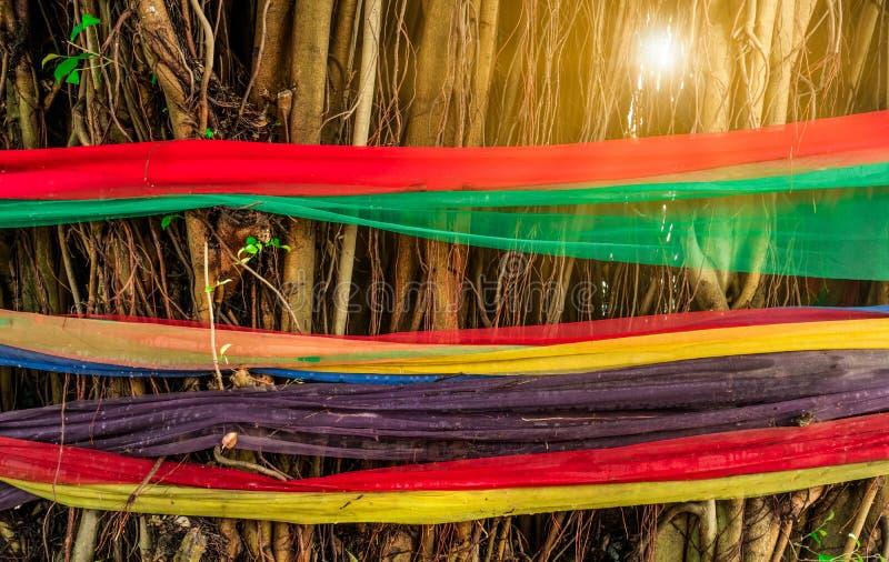 Περικάλυμμα υφάσματος πέντε χρωμάτων γύρω από το δέντρο με το φως φλογών Η πεποίθηση των ταϊλανδικών λαών Τρόποι να προστατευθεί  στοκ εικόνες