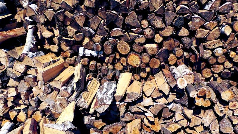 Περικοπές δέντρων, σημύδα και δρύινη κινηματογράφηση σε πρώτο πλάνο καυσόξυλου στοκ εικόνες