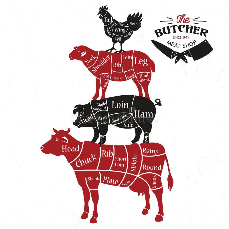 Περικοπές κρέατος Διαγράμματα για το κατάστημα χασάπηδων Ζωική σκιαγραφία επίσης corel σύρετε το διάνυσμα απεικόνισης διανυσματική απεικόνιση