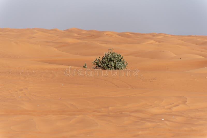Περιοχή ερήμων της Σάρτζας, μια από τις επισκεμμένες θέσεις για από-κοντά από τα roaders, μεγάλο κόκκινο για να οδοντώσει το βράχ στοκ εικόνες