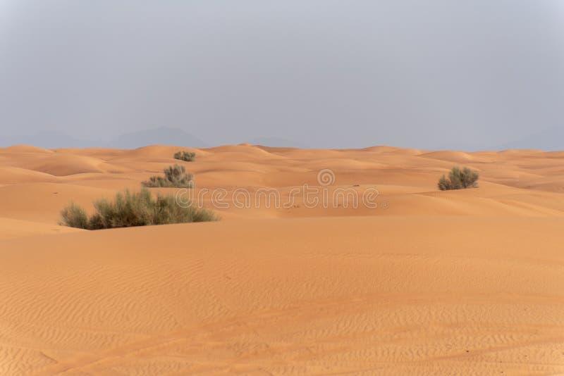 Περιοχή ερήμων της Σάρτζας, μια από τις επισκεμμένες θέσεις για από-κοντά από τα roaders, μεγάλο κόκκινο για να οδοντώσει το βράχ στοκ εικόνα