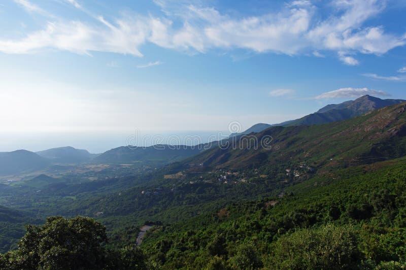 Περιοχή κρασιού της Κορσικής Patrimonio στοκ φωτογραφία