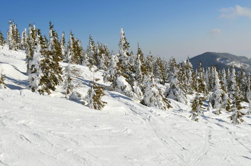 Περιοχή σκι στοκ εικόνες