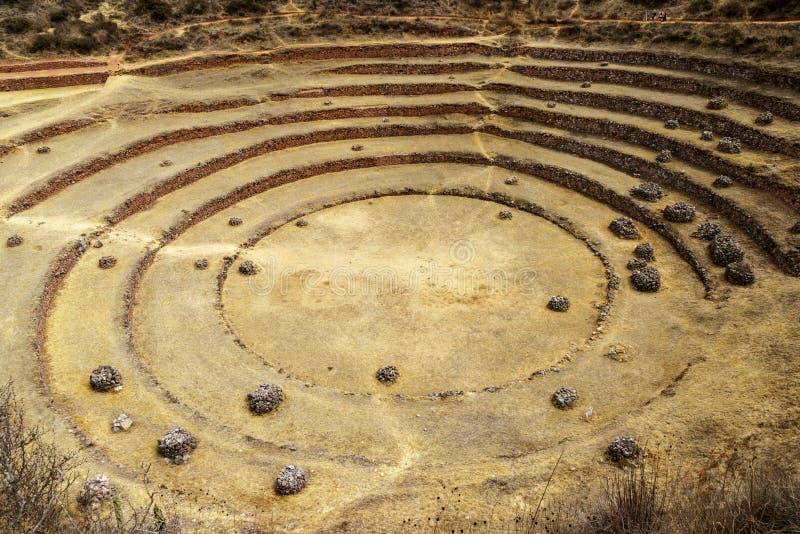 Περιοχή Moray, Inca, Περού στοκ εικόνες με δικαίωμα ελεύθερης χρήσης