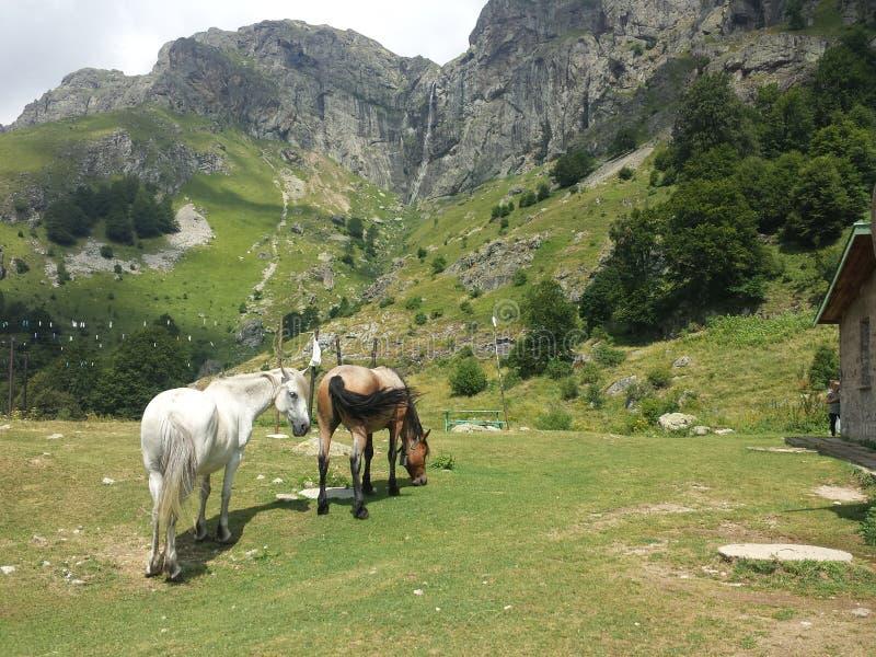 Περιπέτεια στο βουνό στοκ φωτογραφία με δικαίωμα ελεύθερης χρήσης