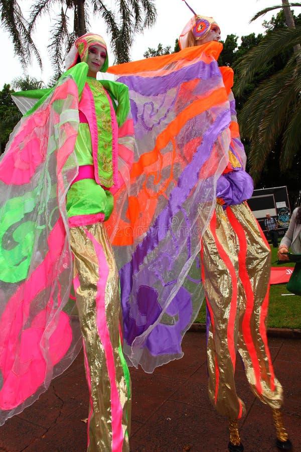 Περιπατητές ξυλοποδάρων γυναικών πεταλούδων στοκ εικόνες με δικαίωμα ελεύθερης χρήσης