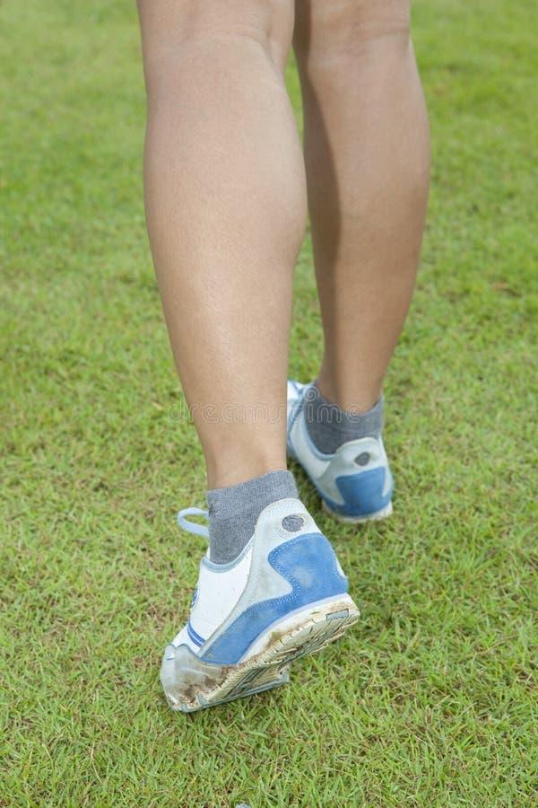 περιπατητής χλόης s ποδιών κ& στοκ εικόνα με δικαίωμα ελεύθερης χρήσης