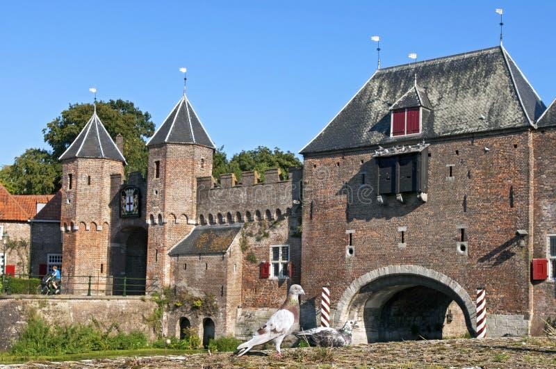 Περιστέρια μπροστά από την πύλη Koppelpoort Amersfoort πόλεων στοκ εικόνες
