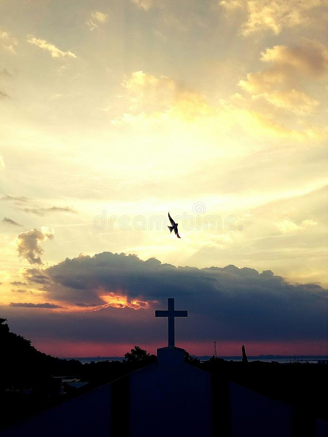 Περιστέρι επάνω από το σταυρό στοκ εικόνες με δικαίωμα ελεύθερης χρήσης