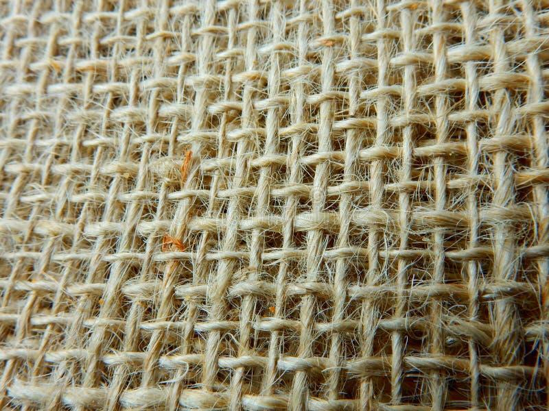 Περιφερειακές βραζιλιάνες φυσικές ίνες στοκ φωτογραφία