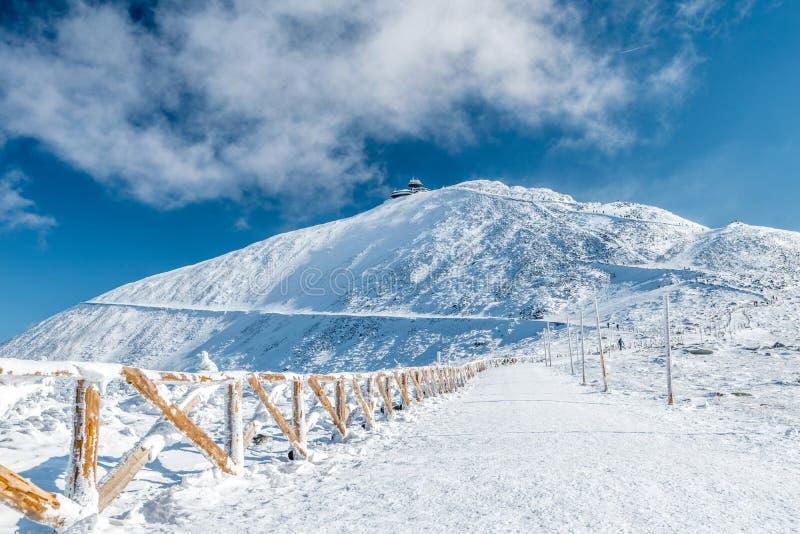 Περιφραγμένη πορεία πεζοπορίας στο βουνό Snezka μια ηλιόλουστη ημέρα το χειμώνα, γιγαντιαία βουνά Krkonose, Τσεχία στοκ εικόνα