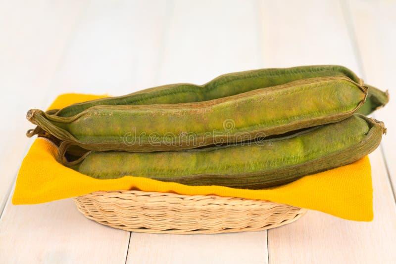 Περουβιανά φρούτα αποκαλούμενα Pacay στοκ εικόνες