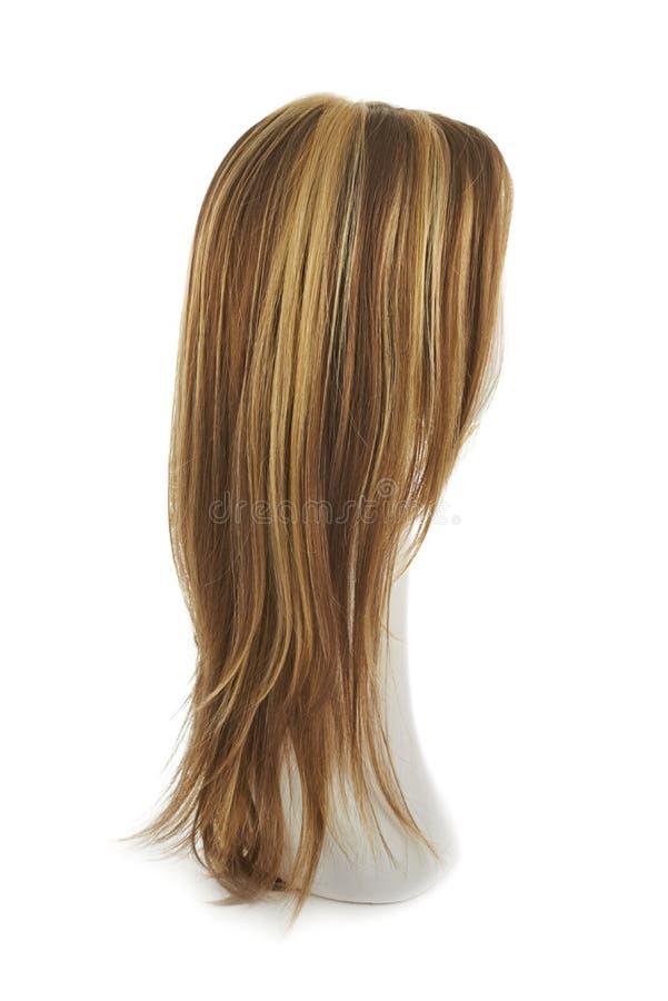 Περούκα τρίχας πέρα από το κεφάλι μανεκέν στοκ εικόνα με δικαίωμα ελεύθερης χρήσης