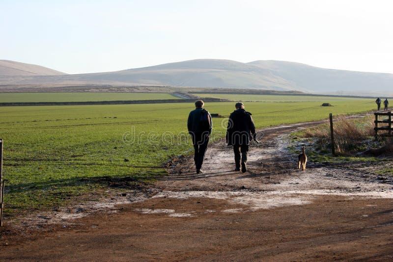 περπάτημα γιων πατέρων σκυλιών στοκ φωτογραφίες με δικαίωμα ελεύθερης χρήσης