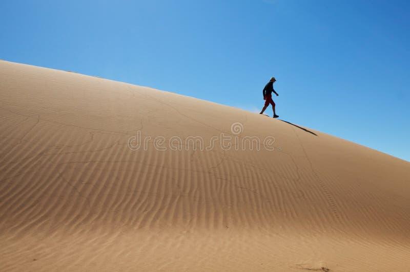 Περπάτημα στον αμμόλοφο άμμου στοκ εικόνες με δικαίωμα ελεύθερης χρήσης