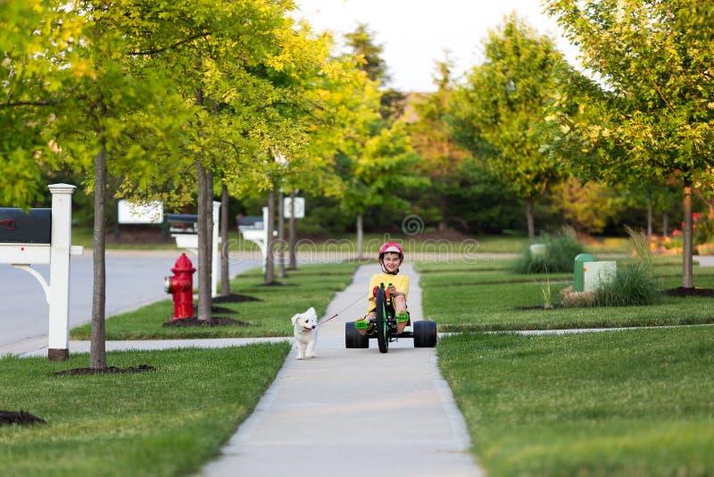 Περπάτημα του σκυλιού με το τρίκυκλο στη γειτονιά στοκ φωτογραφίες