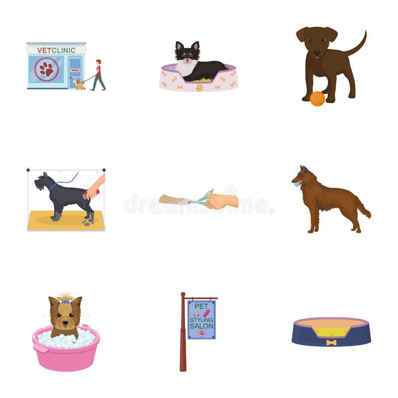 Περπατώντας με ένα σκυλί, μια κλινική κτηνιάτρων, ένα κούρεμα σκυλιών, ένα λούσιμο κουταβιών, που ταΐζει ένα κατοικίδιο ζώο Καθορ απεικόνιση αποθεμάτων