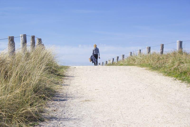 Περπατώντας με το σκυλί στους αμμόλοφους, Κάτω Χώρες στοκ εικόνες με δικαίωμα ελεύθερης χρήσης