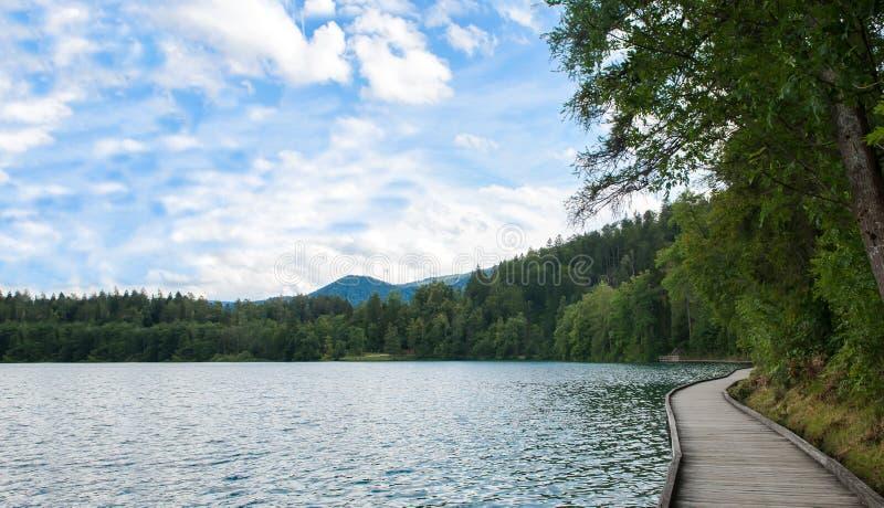 Περπατώντας στην ξύλινη πορεία στην αιμορραγημένη λίμνη, αιμορράγησε το κάστρο στον απότομο βράχο με τις ιουλιανές Άλπεις και την στοκ φωτογραφία