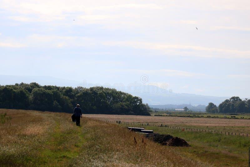 Περπατώντας στο μώλο, Pilling, Lancashire στοκ φωτογραφίες με δικαίωμα ελεύθερης χρήσης