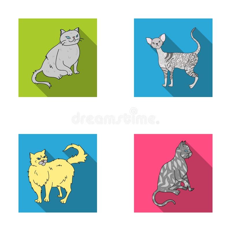 Περσικό, Cornish rex και άλλα είδη Τις φυλές γατών καθορισμένες τα εικονίδια συλλογής στην επίπεδη απεικόνιση αποθεμάτων συμβόλων ελεύθερη απεικόνιση δικαιώματος